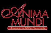 Anima Mundi Magazine Logo
